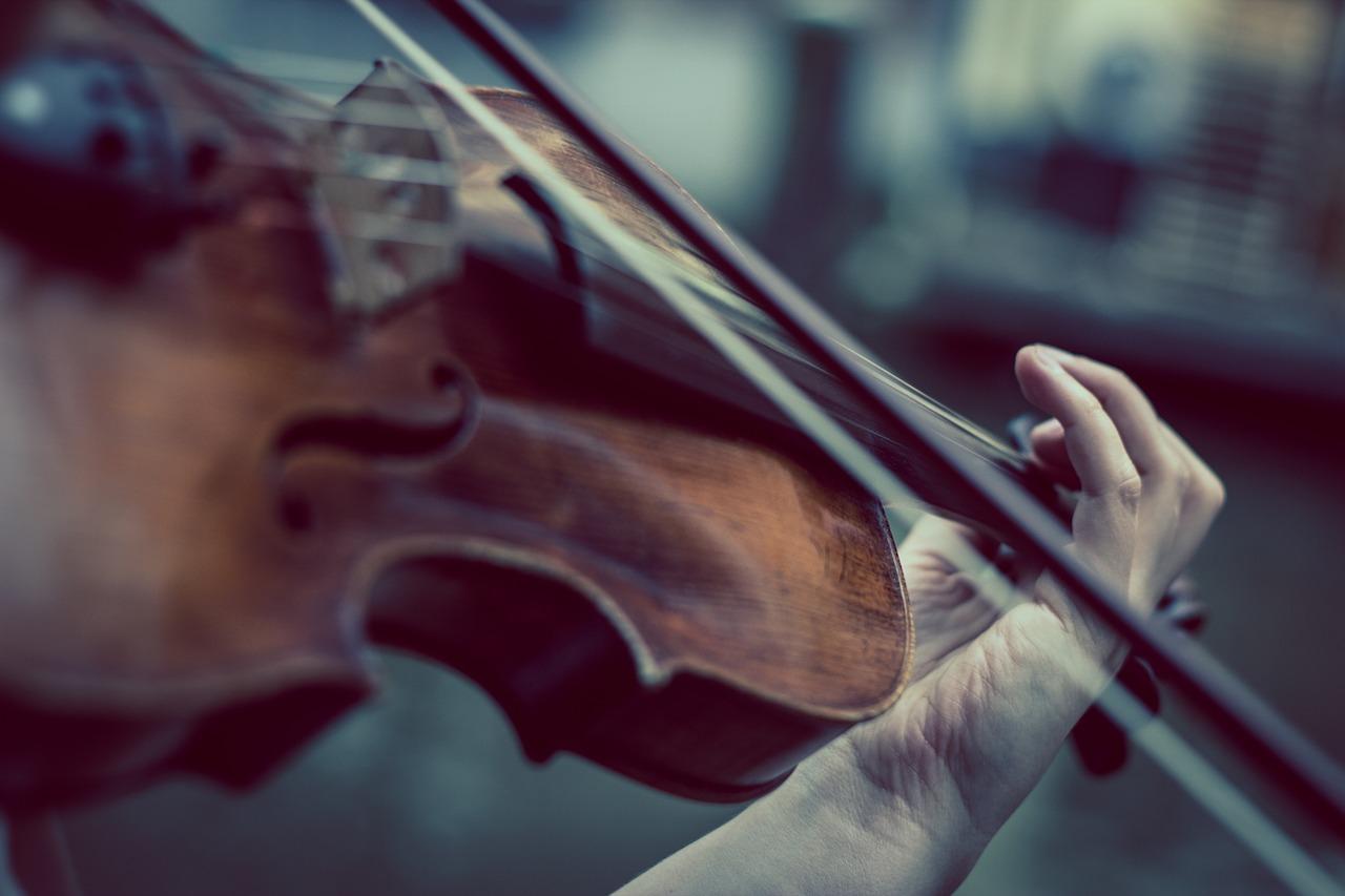 Streichinstrumente: Grundierung mit Gelatine Quelle: www.pixabay.de
