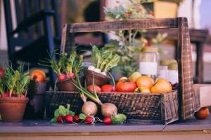 Selbst Gemüse ziehen aus samenfesten Saatgut
