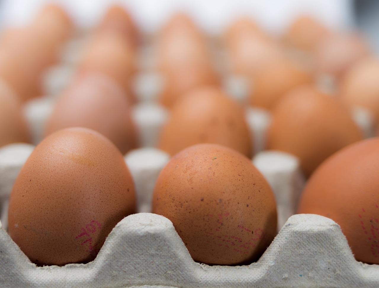 STATT Ei - Achtung, in Fertigprodukten sind meist Eier aus Qualhaltung