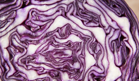 red-cabbage-73364_1280_rotkohl_pixa_cco_stux